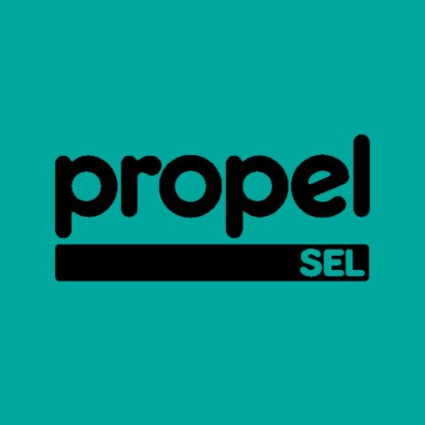 What Makes Sel Work >> Propel Sel Ignite Afterschool